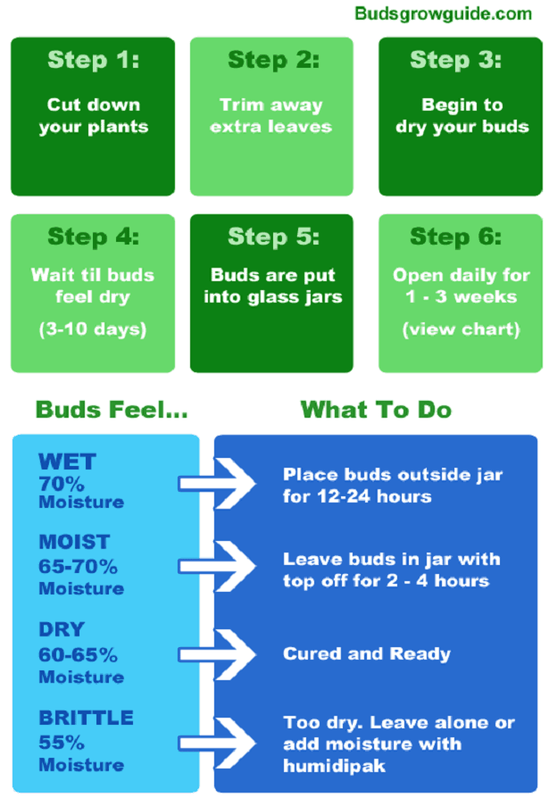 Cannabis Wetness guide