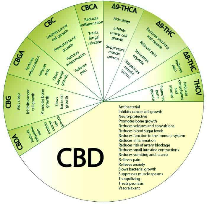 uses for CBD