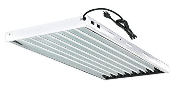 Hydro Crunch T5 Grow Light