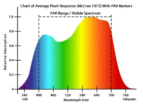 PAR measurement for describing the power of LED Grow Lights